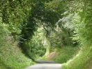Tunnel vert | Photo : VS