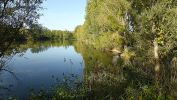 L'étang si calme… | Photo VS