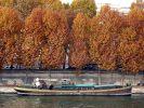 Péniche, arbres, berges de la Seine